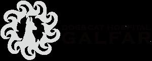 犬猫専門動物病院